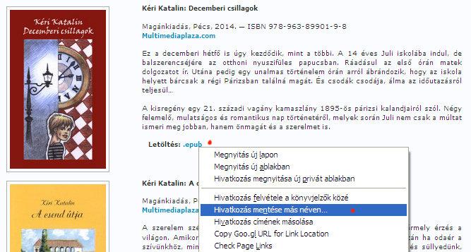 1. ábra - A kiválasztott epub típusú könyv lementése egy weboldalról